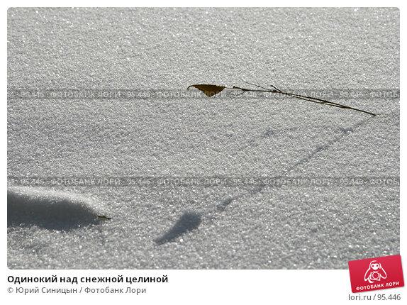 Одинокий над снежной целиной, фото № 95446, снято 26 января 2007 г. (c) Юрий Синицын / Фотобанк Лори