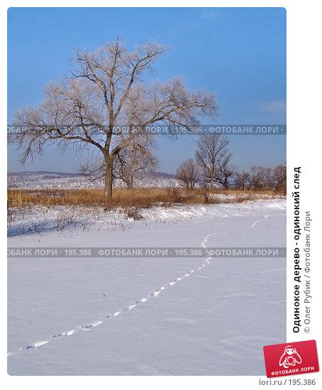 Одинокое дерево - одинокий след, фото № 195386, снято 28 января 2008 г. (c) Олег Рубик / Фотобанк Лори