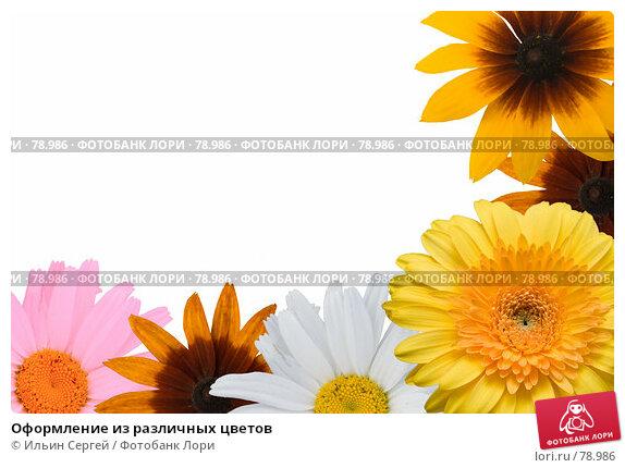Оформление из различных цветов, фото № 78986, снято 30 марта 2017 г. (c) Ильин Сергей / Фотобанк Лори