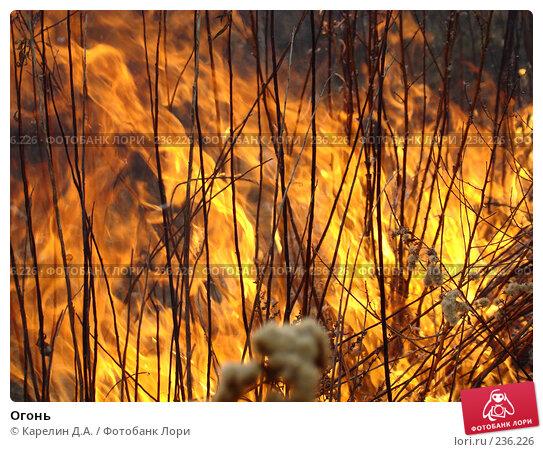 Огонь, фото № 236226, снято 29 марта 2008 г. (c) Карелин Д.А. / Фотобанк Лори