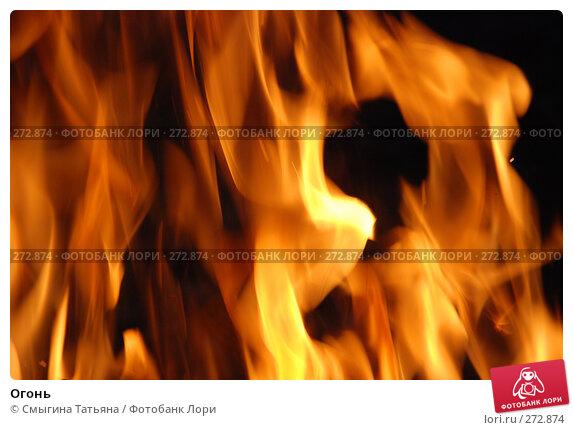 Огонь, фото № 272874, снято 1 мая 2008 г. (c) Смыгина Татьяна / Фотобанк Лори