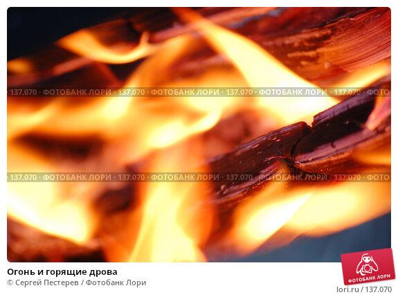 Огонь и горящие дрова, фото № 137070, снято 21 сентября 2007 г. (c) Сергей Пестерев / Фотобанк Лори