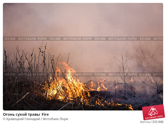 Огонь сухой травы  Fire, фото № 333846, снято 2 апреля 2006 г. (c) Кравецкий Геннадий / Фотобанк Лори