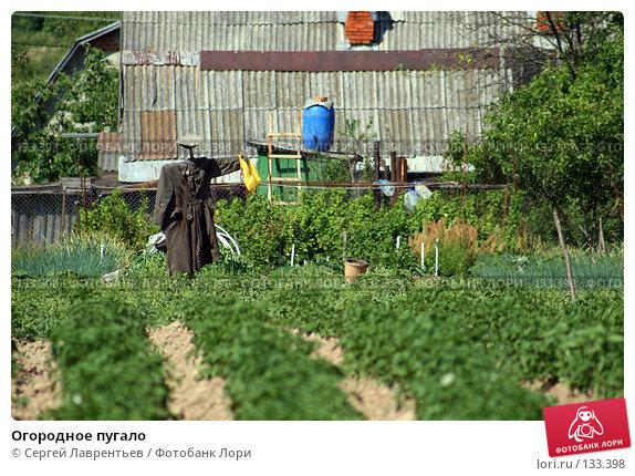 Купить «Огородное пугало», фото № 133398, снято 23 июня 2007 г. (c) Сергей Лаврентьев / Фотобанк Лори