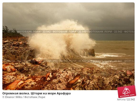 Огромная волна. Шторм на море Арафура, фото № 22542, снято 1 апреля 2007 г. (c) Eleanor Wilks / Фотобанк Лори