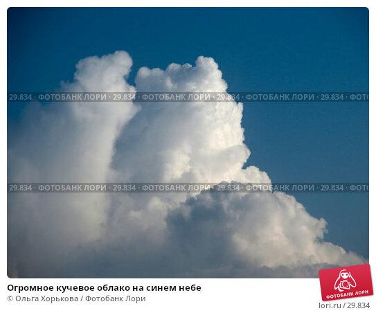 Огромное кучевое облако на синем небе, фото № 29834, снято 30 мая 2006 г. (c) Ольга Хорькова / Фотобанк Лори