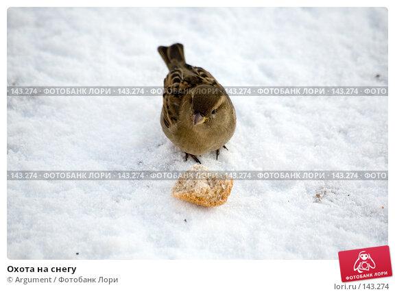 Охота на снегу, фото № 143274, снято 9 февраля 2007 г. (c) Argument / Фотобанк Лори