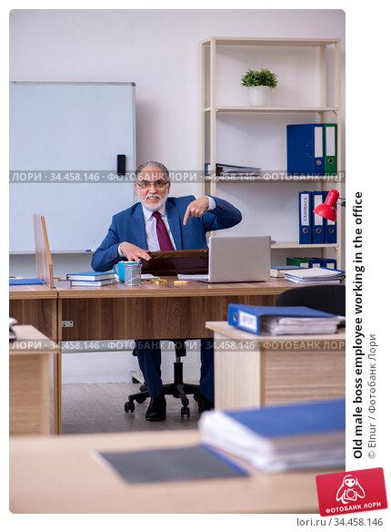 Old male boss employee working in the office. Стоковое фото, фотограф Elnur / Фотобанк Лори