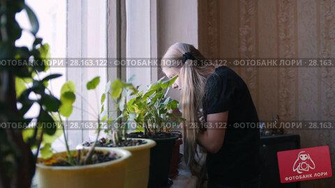 Купить «One young girl watering flowers at home, slider», видеоролик № 28163122, снято 13 ноября 2018 г. (c) Константин Шишкин / Фотобанк Лори