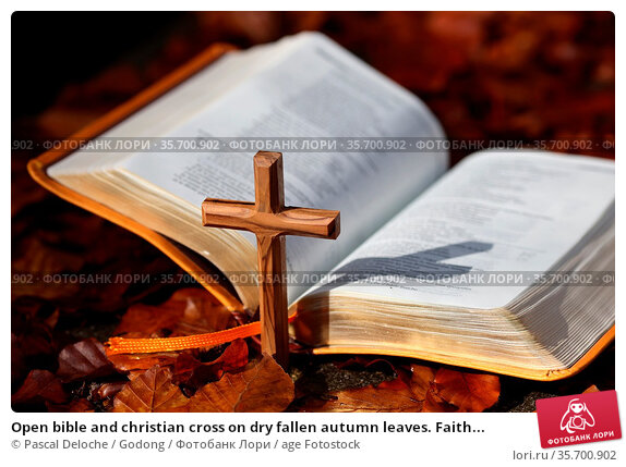Open bible and christian cross on dry fallen autumn leaves. Faith... Стоковое фото, фотограф Pascal Deloche / Godong / age Fotostock / Фотобанк Лори