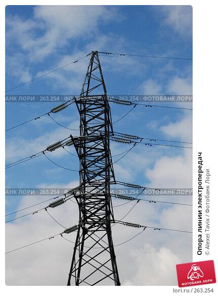 Опора линии электропередач, эксклюзивное фото № 263254, снято 19 апреля 2008 г. (c) Alexei Tavix / Фотобанк Лори
