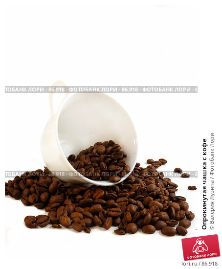Опрокинутая чашка с кофе, фото № 86918, снято 12 сентября 2007 г. (c) Валерия Потапова / Фотобанк Лори