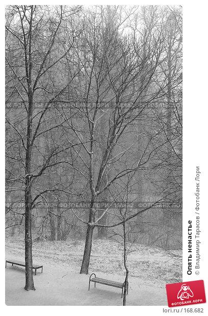 Опять ненастье, фото № 168682, снято 8 апреля 2007 г. (c) Владимир Тарасов / Фотобанк Лори