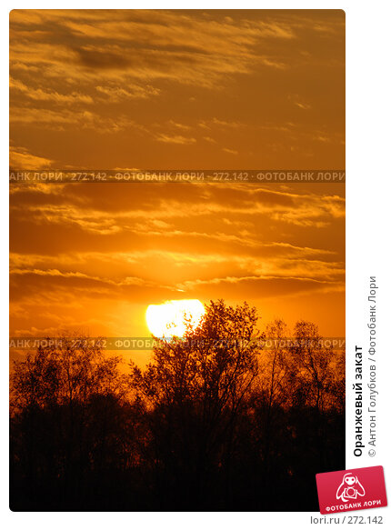 Купить «Оранжевый закат», фото № 272142, снято 2 мая 2008 г. (c) Антон Голубков / Фотобанк Лори