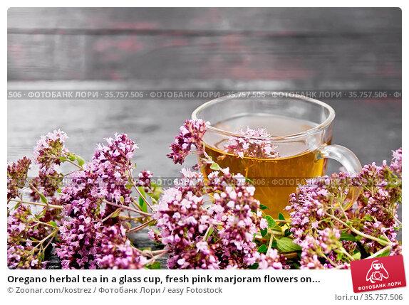 Oregano herbal tea in a glass cup, fresh pink marjoram flowers on... Стоковое фото, фотограф Zoonar.com/kostrez / easy Fotostock / Фотобанк Лори