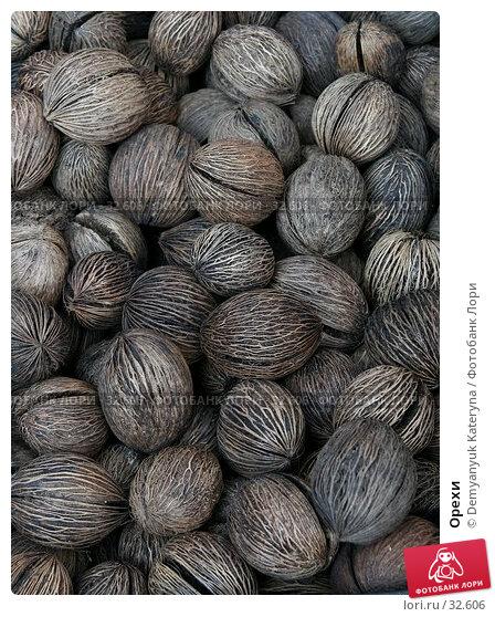 Купить «Орехи», фото № 32606, снято 12 апреля 2007 г. (c) Demyanyuk Kateryna / Фотобанк Лори