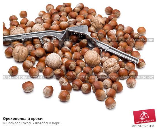 Купить «Орехоколка и орехи», фото № 178434, снято 17 января 2008 г. (c) Насыров Руслан / Фотобанк Лори