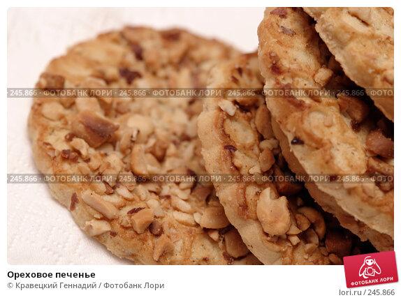 Ореховое печенье, фото № 245866, снято 26 января 2004 г. (c) Кравецкий Геннадий / Фотобанк Лори