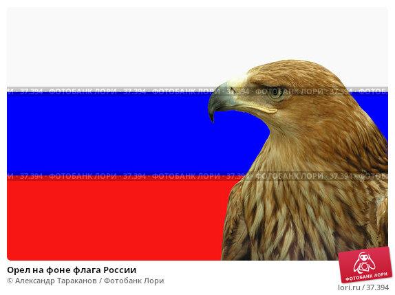 Орел на фоне флага России, фото № 37394, снято 23 января 2017 г. (c) Александр Тараканов / Фотобанк Лори