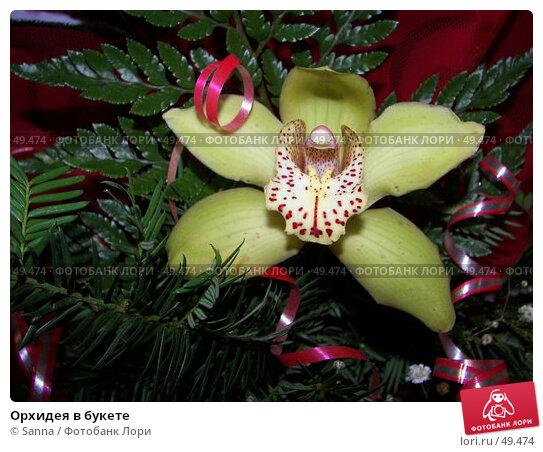 Орхидея в букете, фото № 49474, снято 29 ноября 2006 г. (c) Sanna / Фотобанк Лори