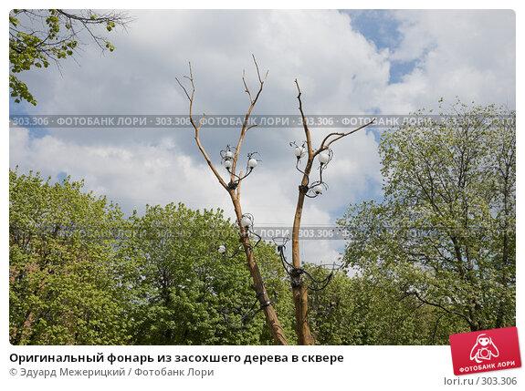 Оригинальный фонарь из засохшего дерева в сквере, фото № 303306, снято 11 мая 2008 г. (c) Эдуард Межерицкий / Фотобанк Лори