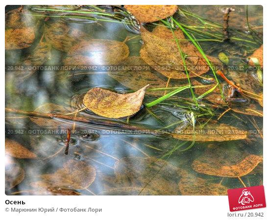 Осень, фото № 20942, снято 26 июля 2017 г. (c) Марюнин Юрий / Фотобанк Лори