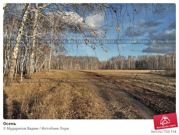 Осень, фото № 123114, снято 21 октября 2007 г. (c) Мударисов Вадим / Фотобанк Лори