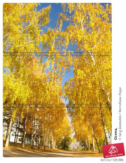 Осень, фото № 129986, снято 1 октября 2005 г. (c) Serg Zastavkin / Фотобанк Лори
