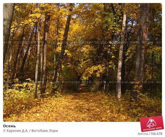 Осень, фото № 166678, снято 8 октября 2006 г. (c) Карелин Д.А. / Фотобанк Лори