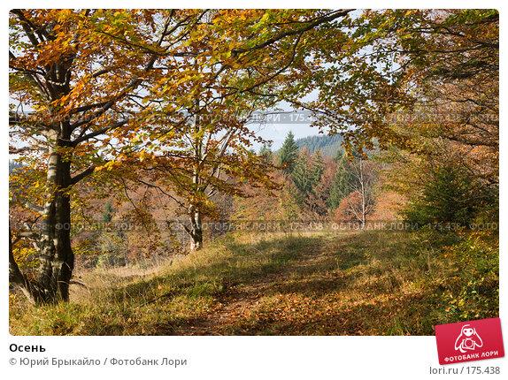 Осень, фото № 175438, снято 5 октября 2007 г. (c) Юрий Брыкайло / Фотобанк Лори