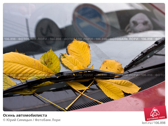 Осень автомобилиста, фото № 106898, снято 26 октября 2007 г. (c) Юрий Синицын / Фотобанк Лори
