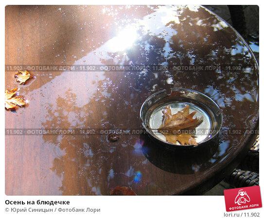 Осень на блюдечке, фото № 11902, снято 24 сентября 2006 г. (c) Юрий Синицын / Фотобанк Лори