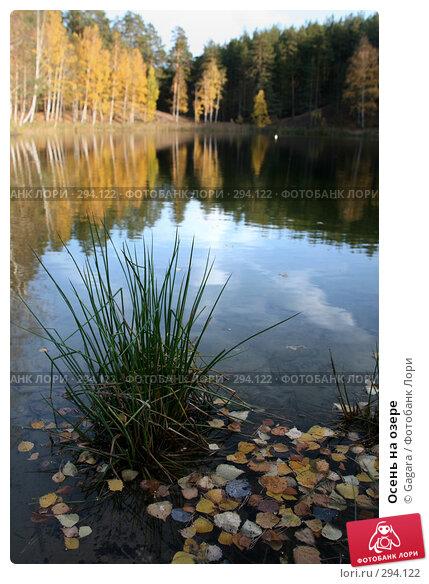 Осень на озере, фото № 294122, снято 7 октября 2007 г. (c) Gagara / Фотобанк Лори