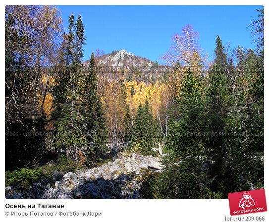Осень на Таганае, фото № 209066, снято 24 апреля 2005 г. (c) Игорь Потапов / Фотобанк Лори