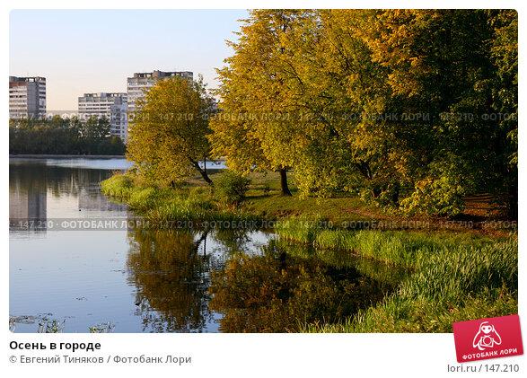 Осень в городе, фото № 147210, снято 22 сентября 2007 г. (c) Евгений Тиняков / Фотобанк Лори