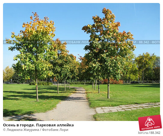 Купить «Осень в городе. Парковая аллейка», фото № 88342, снято 27 апреля 2018 г. (c) Людмила Жмурина / Фотобанк Лори