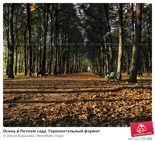 Осень в Летнем саду. Горизонтальный формат, фото № 126906, снято 11 октября 2007 г. (c) Ольга Хорькова / Фотобанк Лори