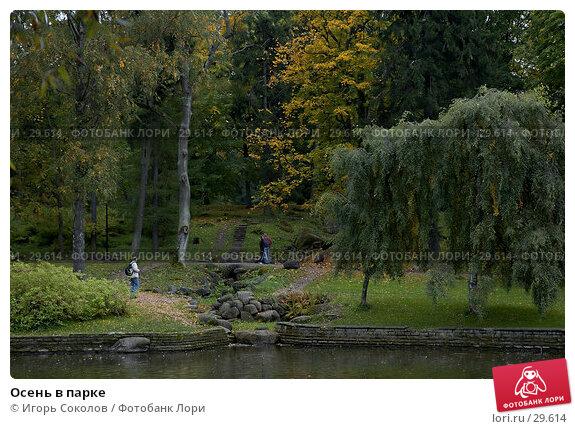 Осень в парке, фото № 29614, снято 20 января 2017 г. (c) Игорь Соколов / Фотобанк Лори