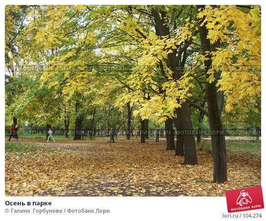 Осень в парке, фото № 104274, снято 26 апреля 2017 г. (c) Галина  Горбунова / Фотобанк Лори