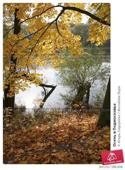 Осень в Подмосковье, фото № 188434, снято 3 октября 2007 г. (c) Игорь Сидоренко / Фотобанк Лори