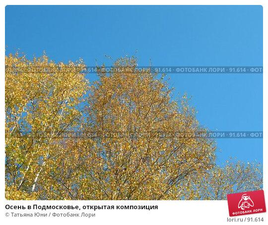 Осень в Подмосковье, открытая композиция, фото № 91614, снято 30 сентября 2007 г. (c) Татьяна Юни / Фотобанк Лори