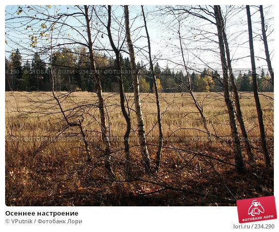 Купить «Осеннее настроение», фото № 234290, снято 10 октября 2005 г. (c) VPutnik / Фотобанк Лори