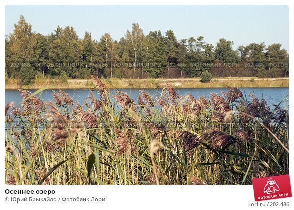Осеннее озеро, фото № 202486, снято 24 сентября 2007 г. (c) Юрий Брыкайло / Фотобанк Лори
