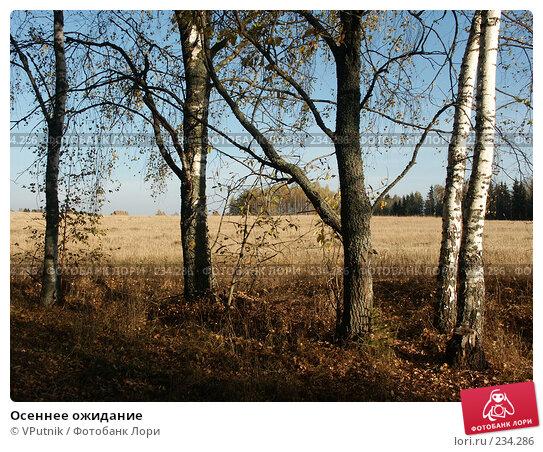 Осеннее ожидание, фото № 234286, снято 10 октября 2005 г. (c) VPutnik / Фотобанк Лори