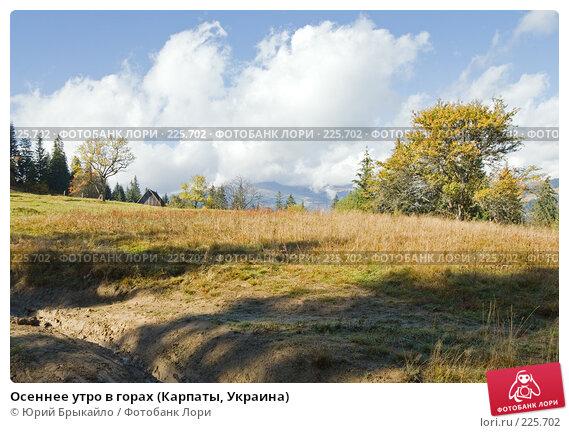 Купить «Осеннее утро в горах (Карпаты, Украина)», фото № 225702, снято 29 сентября 2007 г. (c) Юрий Брыкайло / Фотобанк Лори