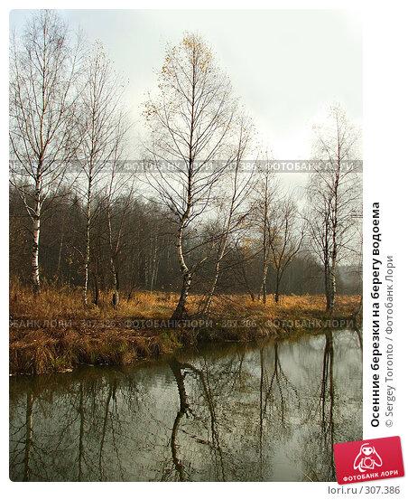 Осенние березки на берегу водоема, фото № 307386, снято 27 октября 2007 г. (c) Sergey Toronto / Фотобанк Лори