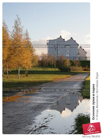 Осенние лужи в парке, фото № 96610, снято 11 октября 2007 г. (c) Игорь Веснинов / Фотобанк Лори