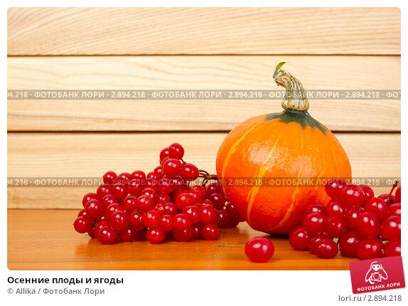 Купить «Осенние плоды и ягоды», фото № 2894218, снято 13 октября 2011 г. (c) Allika / Фотобанк Лори