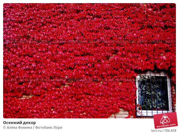 Осенний декор, фото № 156418, снято 20 октября 2007 г. (c) Алёна Фомина / Фотобанк Лори