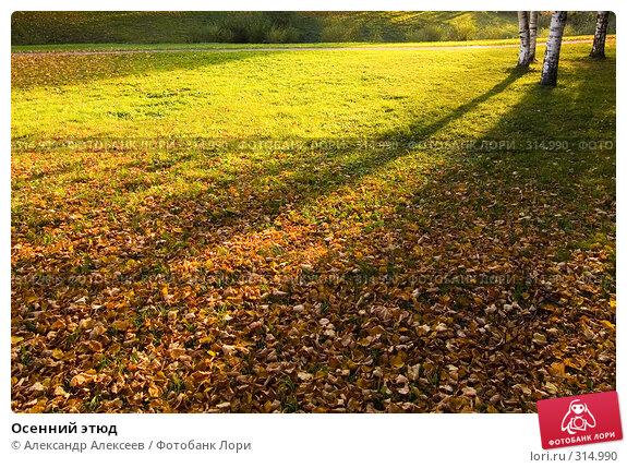 Осенний этюд, эксклюзивное фото № 314990, снято 30 сентября 2007 г. (c) Александр Алексеев / Фотобанк Лори